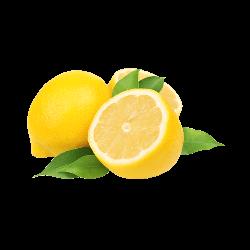 Limoni Bio da spremuta confezione 30 Kg – Spedizione lunedì e martedì